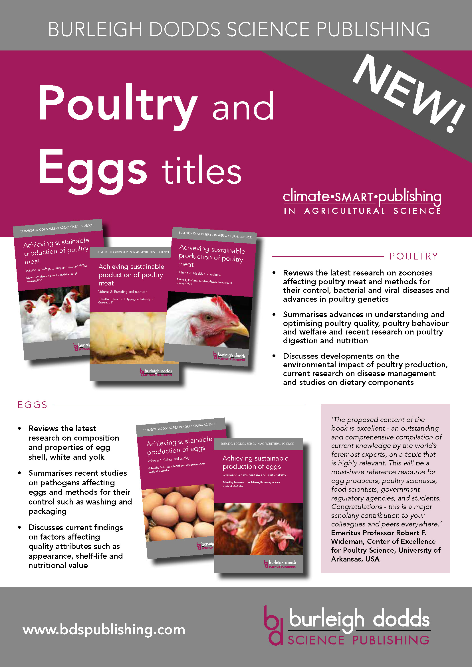 Poultry Eggs Flyer Pagina 1